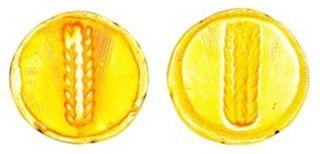 メタポンティオン インキュースのコイン